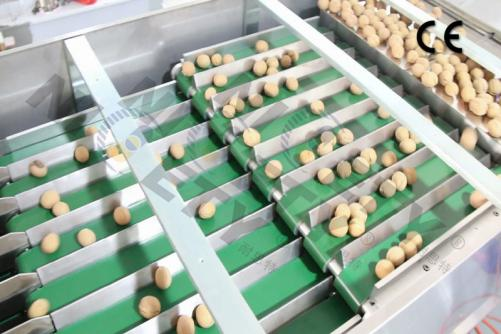 Nuts Counting and Packaging Machine