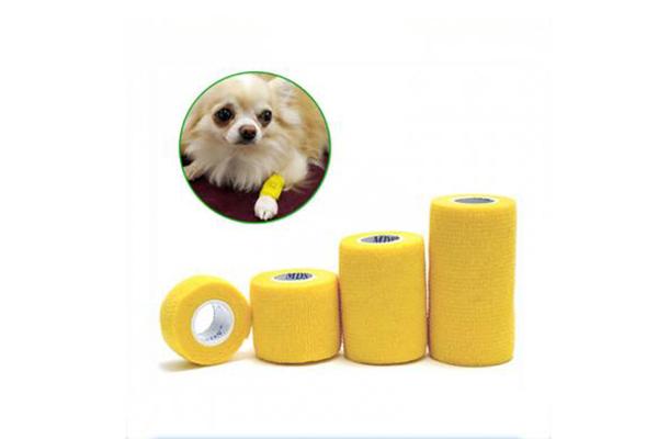 Veterinary Bandage