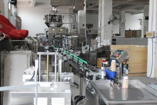 Automatic particle filling line