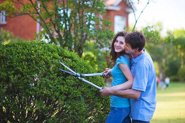 Ручные инструменты для садовых работ