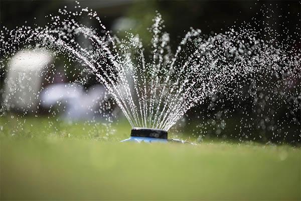 9- Pattern Plastic Sprinkler