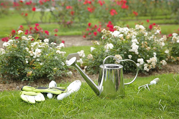 4.5L Stainless Steel Watering Can