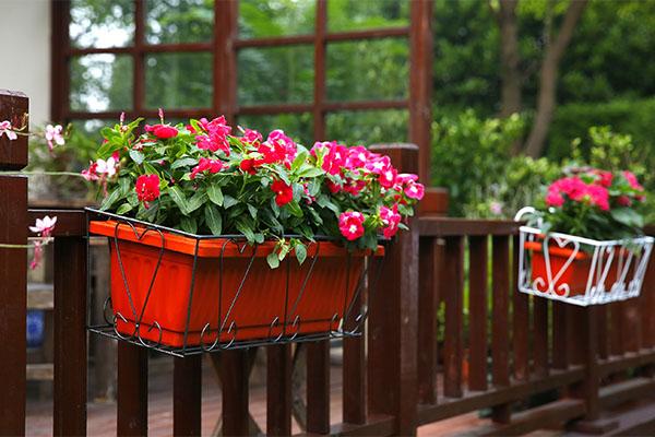 Rectangle Basic Plant Pot