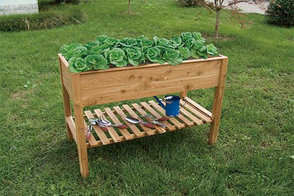 Cedar Raised Garden Bed 2 Layer