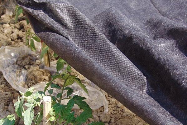PP Fabric Mat