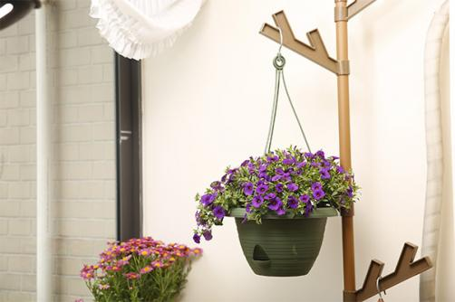 "11"" Basic Flower Pot Color Green"