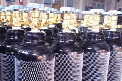 8L Nitrogen Cylinder