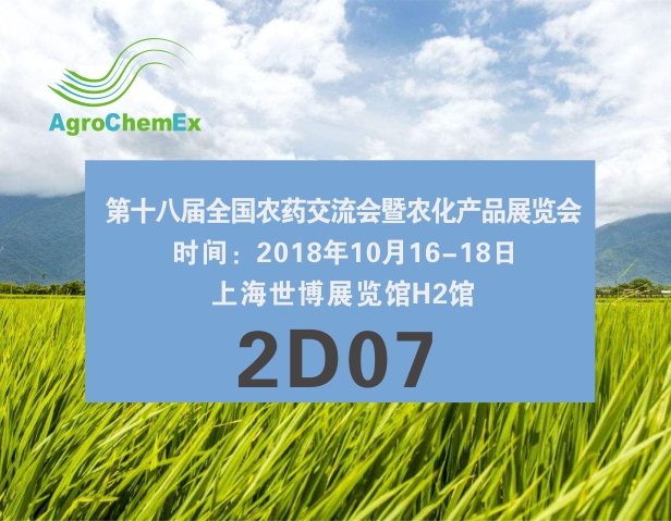 相约十月上海ACE展会