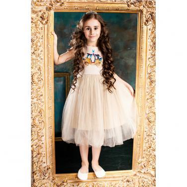 Princess Dress 71855