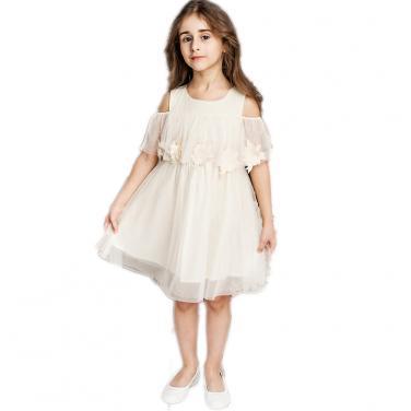 Princess Dress 25