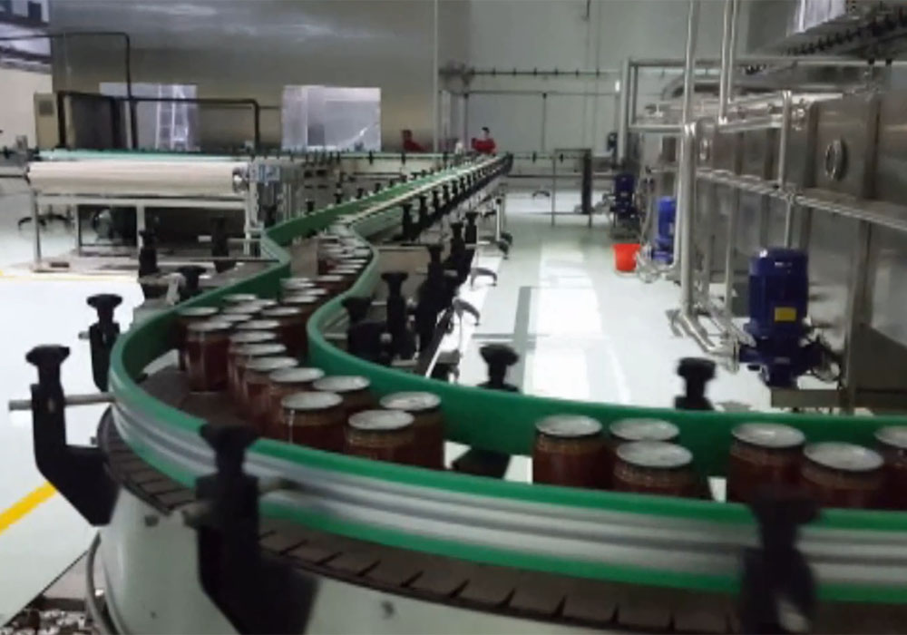 Canned Fruit/Vegetable Processing Line