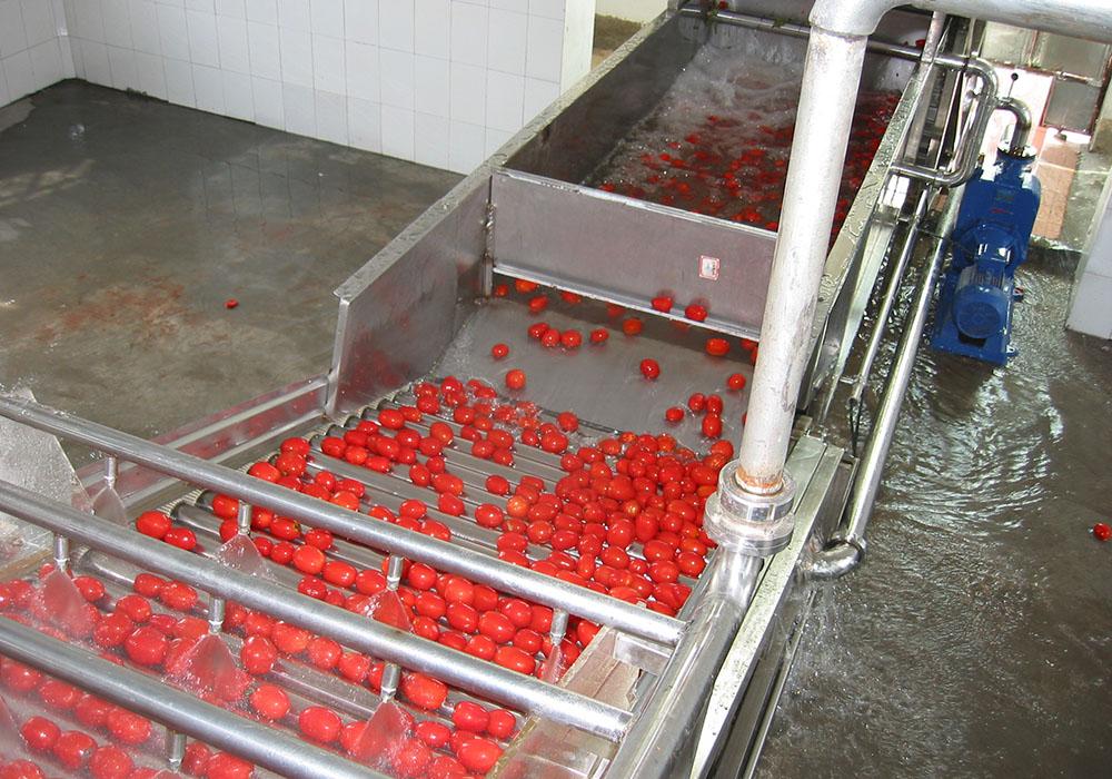 果蔬加工前处理设备