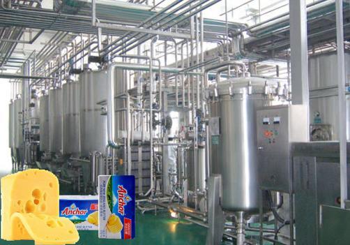 奶酪加工生产线