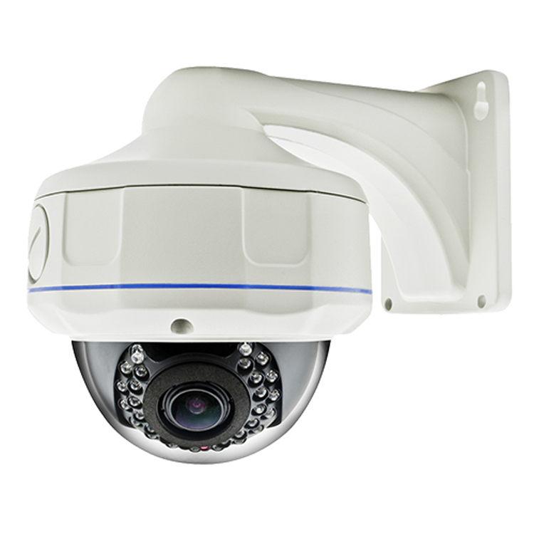3MP Professional Face Detection 30m IR Dome IP Camera IGC131C-3M