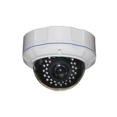 3MP Professional Face Detection 30m IR Dome IP Camera IGC131C-3M