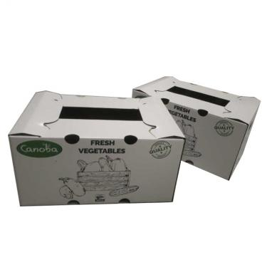 15-20 kg Fruit Paper packing Box