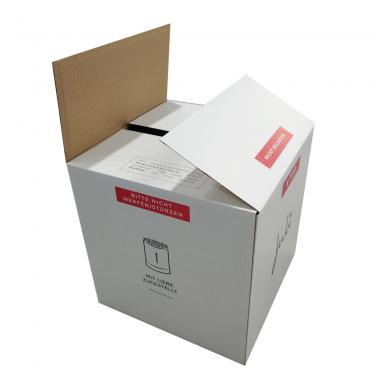 Heavy RSC Carton Box