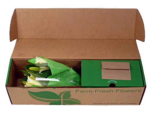 tuck top brown kraft flower box