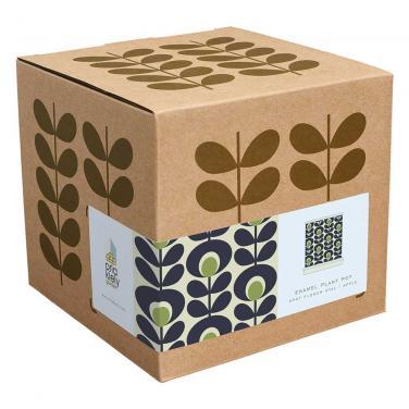 Flexo flower shipping box