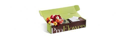 Tuck top flower mailer box