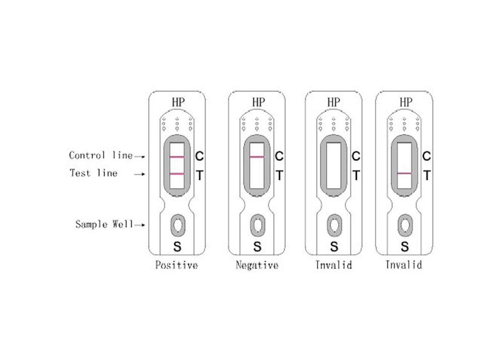 Diagnostic Kit for Helicobacter Pylori Antigen (Colloidal Gold)
