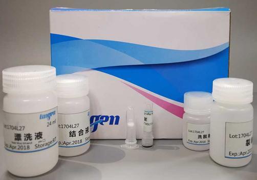 Serum  Plasma Circulating RNA Extraction Kit