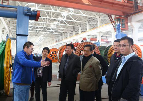 Indonesian Customers Visited Jiangnan Cable