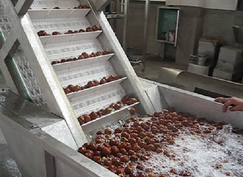 date juice production line