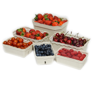 Fruit and vegetable pulp tray