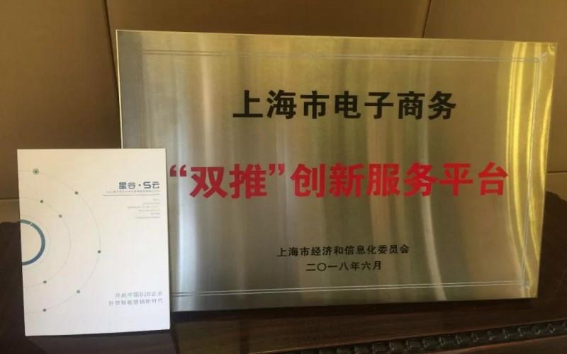 """上海谷擎母公司入选上海经信委2018年度电子商务""""双推""""服务平台"""